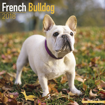 Calendar 2018 French Bulldog
