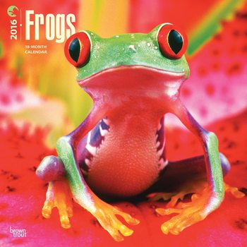 Calendar 2017 Frogs