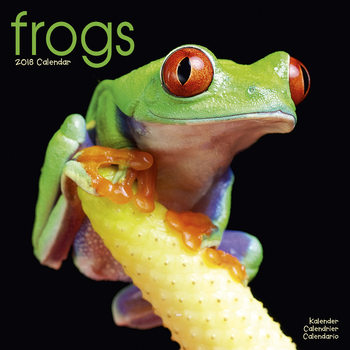 Calendar 2018 Frogs