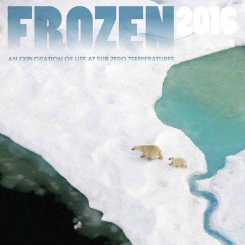 Calendar 2018  Frozen