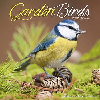 Calendar 2019  Garden Birds