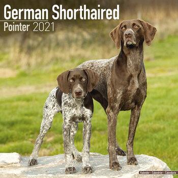 Calendar 2021 German ShortHair Pointer