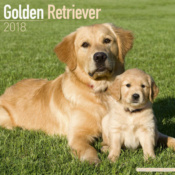 Calendar 2018 Golden Retriever