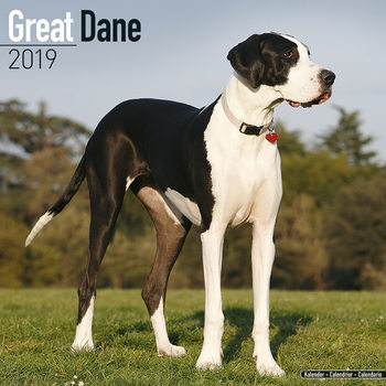 Calendar 2019  Great Dane (Euro)