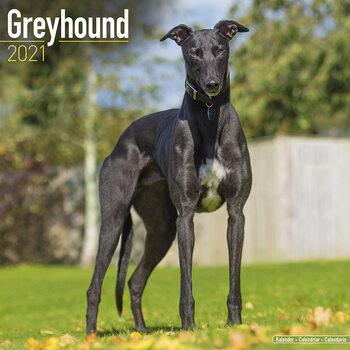 Calendar 2021 Greyhound