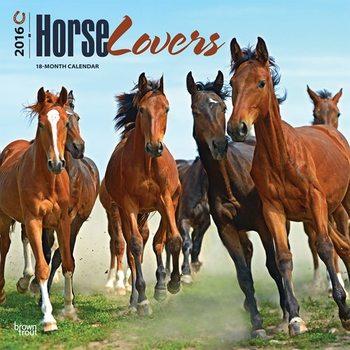 Calendar 2017 Horse