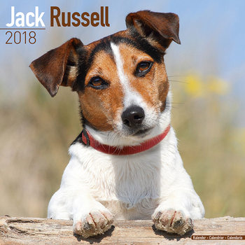Calendar 2018 Jack Russell