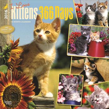 Calendar 2017 Kittens