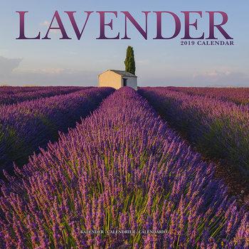 Calendar 2019  Lavender