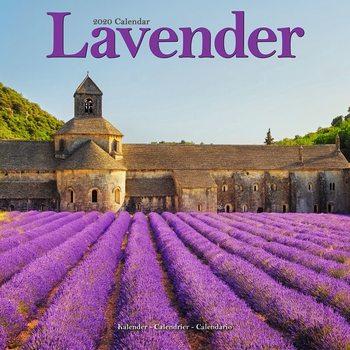 Calendar 2020  Lavender