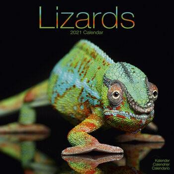 Calendar 2021 Lizards