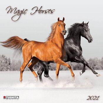 Calendar 2021 Magic Horses