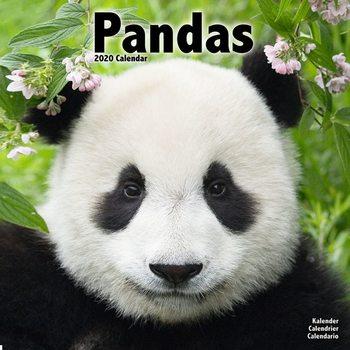 Calendar 2020  Pandas