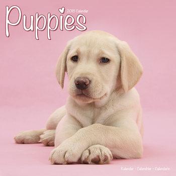 Calendar 2018 Puppies