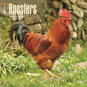 Calendar 2017 Roosters