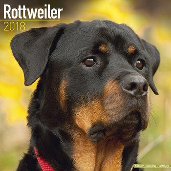 Calendar 2018 Rottweiler