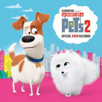 Calendar 2020  Secret Life Of Pets 2