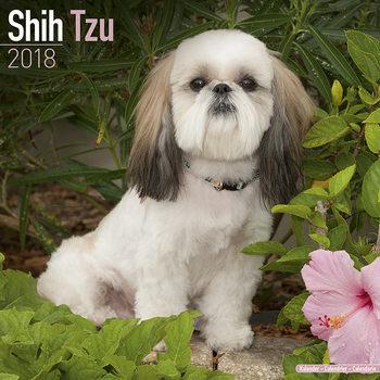 Calendar 2018 Shih Tzu