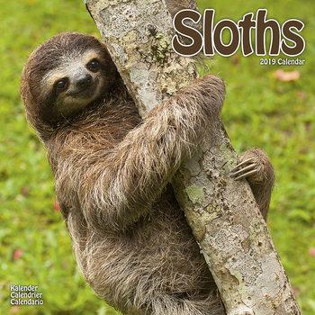 Calendar 2019  Sloths