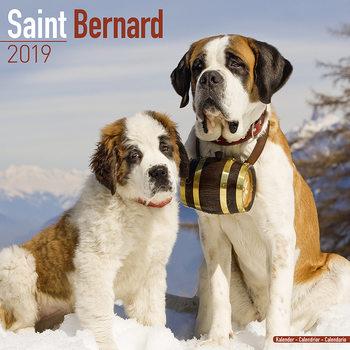 Calendar 2019  St Bernard