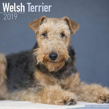 Calendar 2019  Welsh Terrier