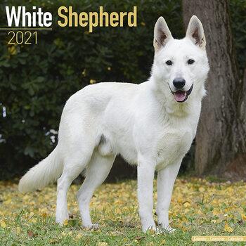 Calendar 2021 White Shepherd