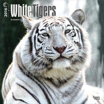 Calendar 2017 White Tigers