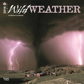 Calendar 2021 Wild Weather