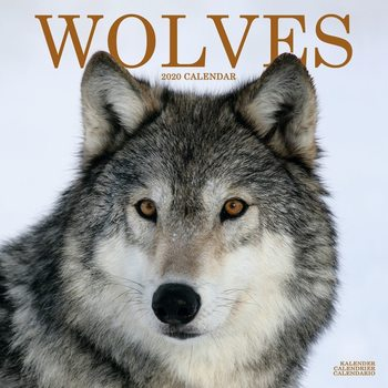 Calendar 2020  Wolves
