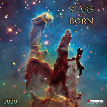 Calendário 2020  A Million Stars are Born