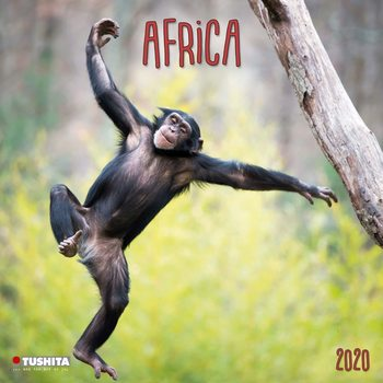 Calendário 2020  Africa