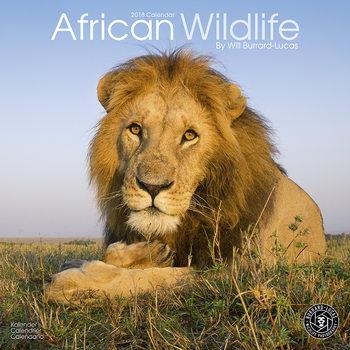 Calendário 2018 African Wildlife