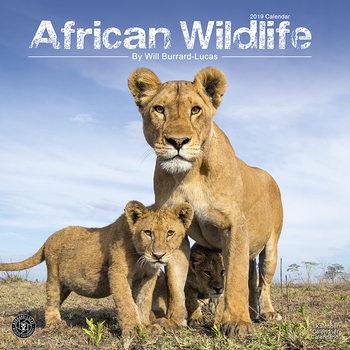 Calendário 2019  African Wildlife
