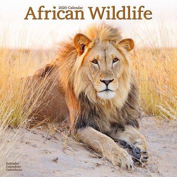 Calendário 2020  African Wildlife