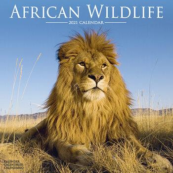 Calendário 2021 African Wildlife