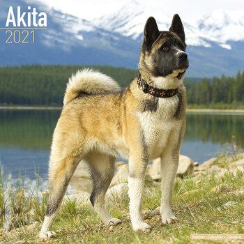 Calendário 2021 Akita