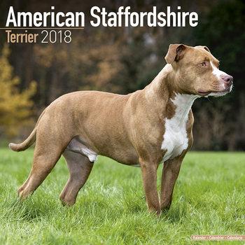 Calendário 2018 Amer. Staff Terrier