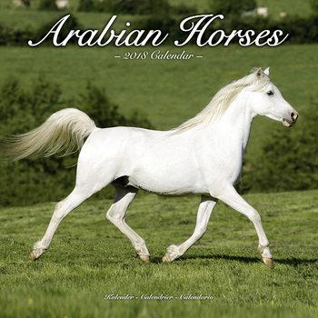 Calendário 2018 Arabian Horses