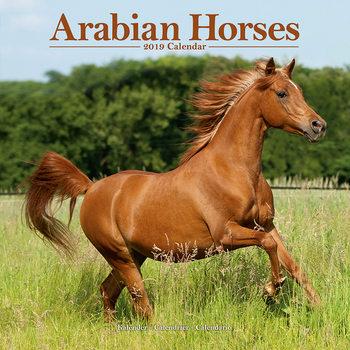 Calendário 2019  Arabian Horses