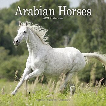 Calendário 2021 Arabian Horses
