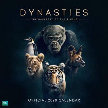 Calendário 2020  BBC Dynasties