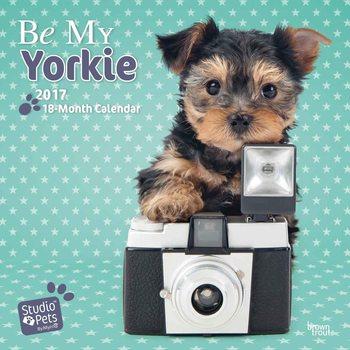 Calendário 2017 Be My Yorkie