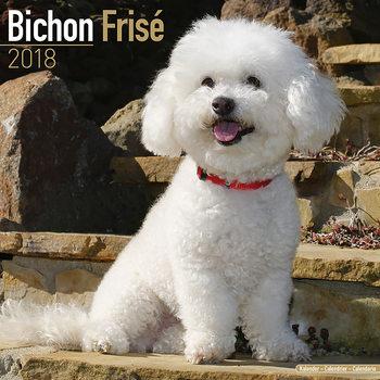 Calendário 2018 Bichon Frise