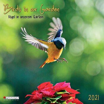 Calendário 2021 Birds in our Garden