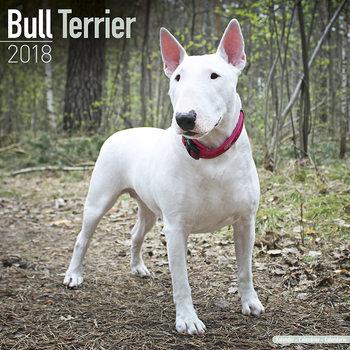 Calendário 2018 Bull Terrier