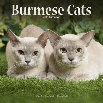 Calendário 2019  Burmese