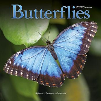 Calendário 2019  Butterflies