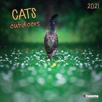 Calendário 2021 Cats Outdoors