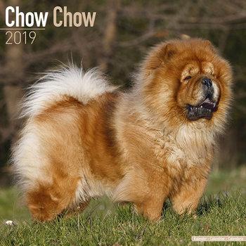 Calendário 2019  Chow Chow