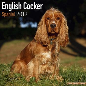 Calendário 2019  Cocker Spaniel